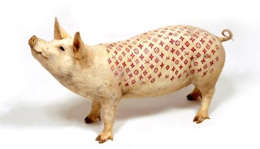 dövmeli hayvanlar tattooed pigs