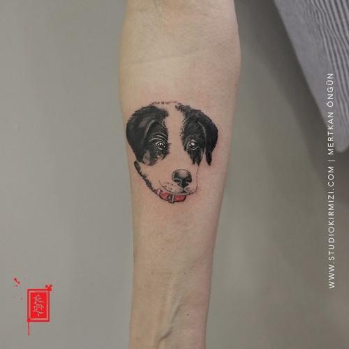 kopek-dovmesi-dog-tattoo-animal-tattoo-istanbul-taksim-