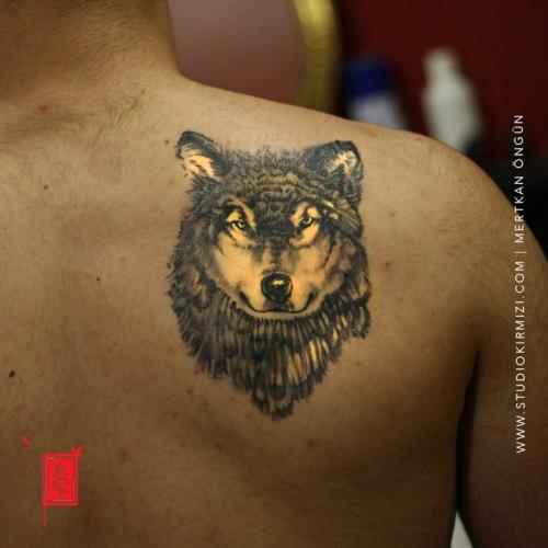 kurt-dovmesi-wolf-tattoo-dovme-taksim-istanbul